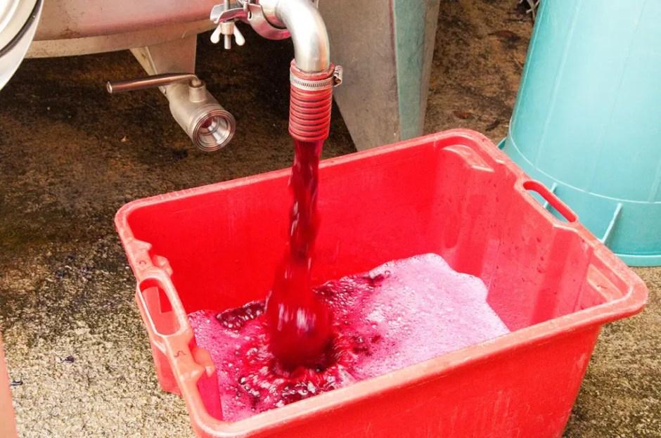 Now - grape juice