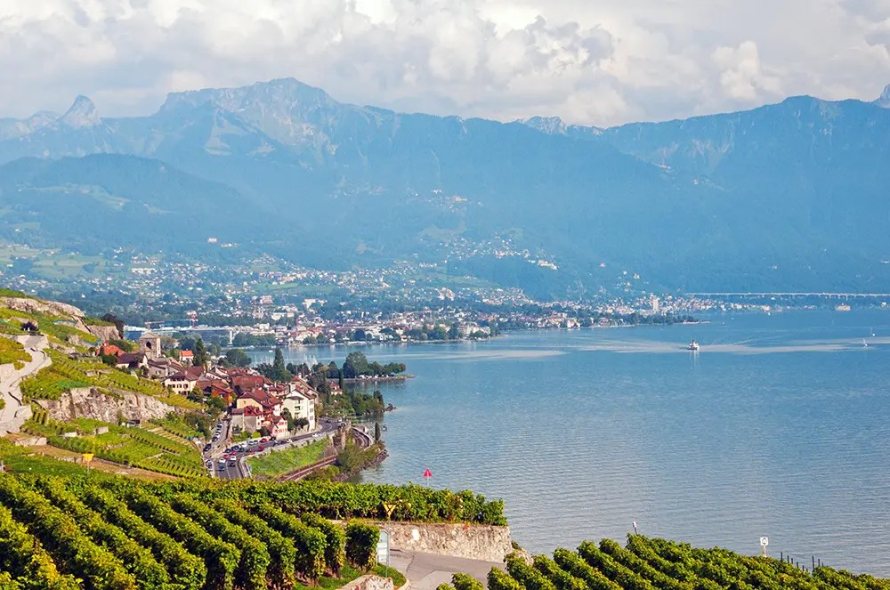 Vineyards, Lac Léman and mountains