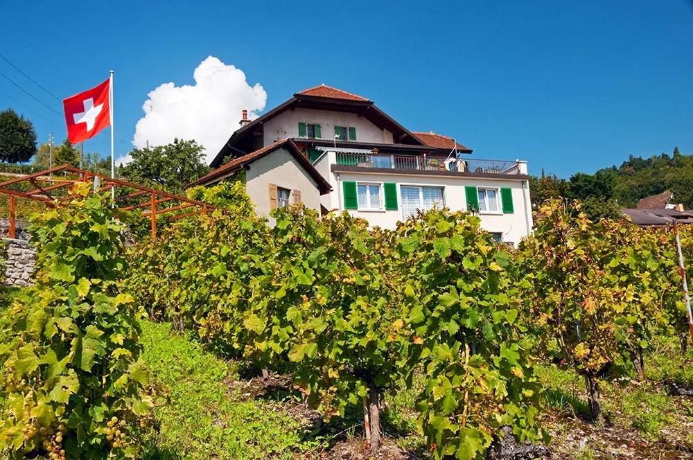 House, vineyard and Swiss flag