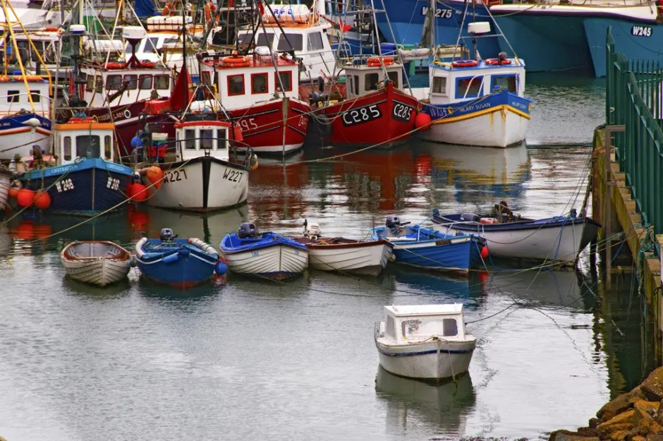 Boats in the Dunmore East harbor, County Waterford, Ireland