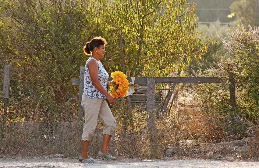 Woman carrying flowers, early morning, Bozburun, Turkey