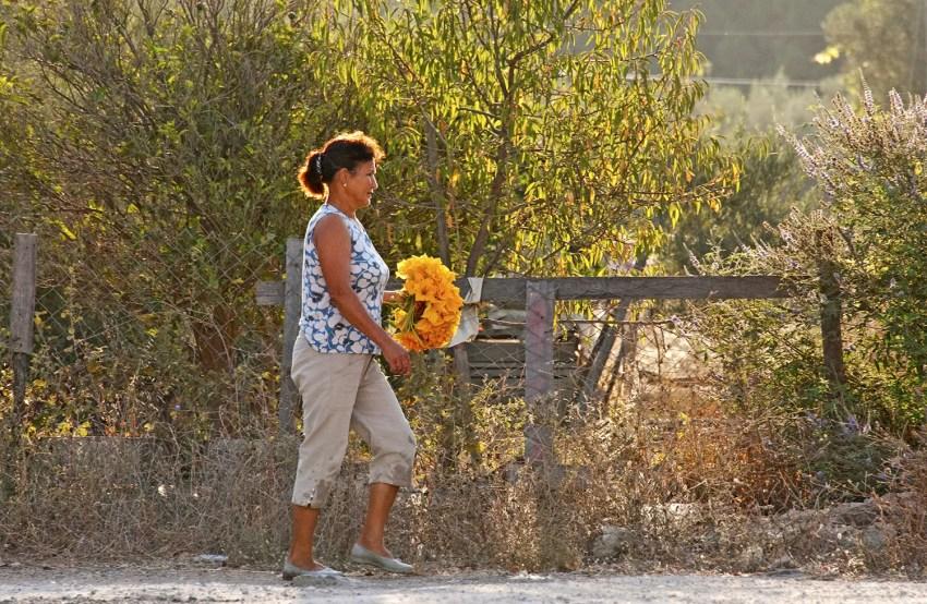 Woman carrying flowers, early morning, Bozburun, Turkey