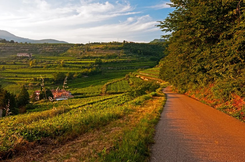 Road, hills and vineyards of Fumane, Italy, sunset