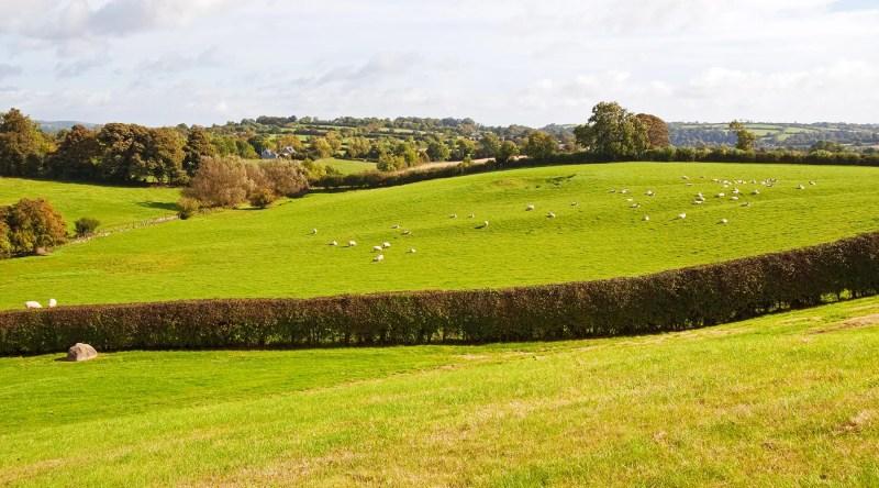 Boyne River Valley, Ireland