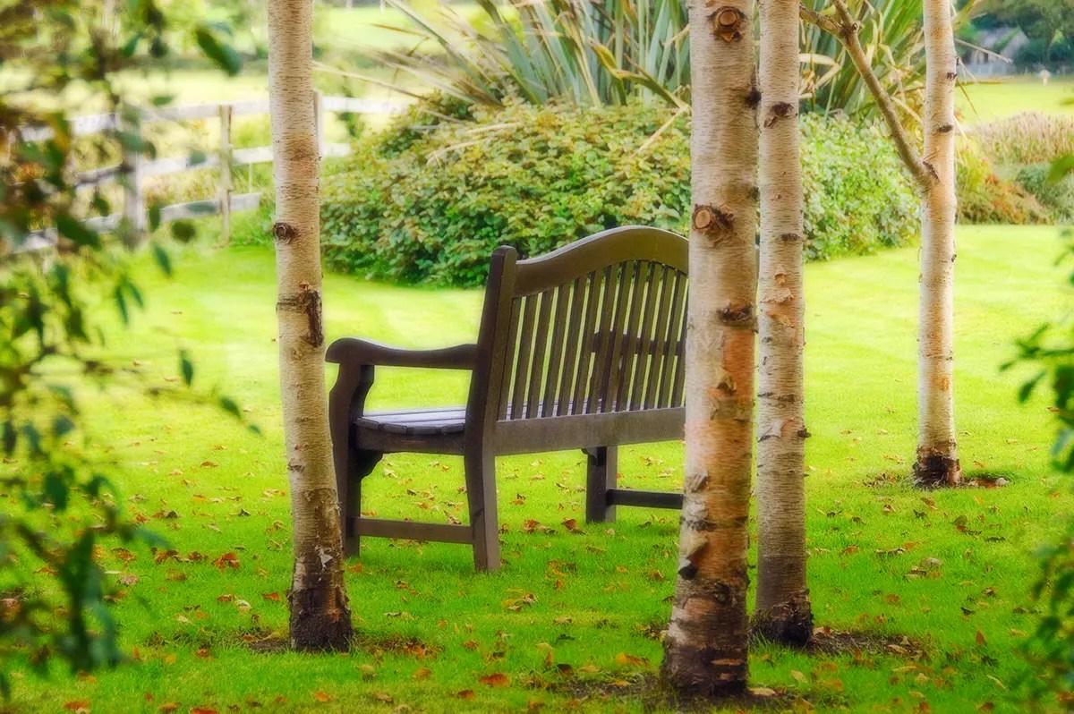 Ireland bench