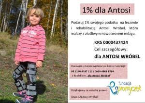 Antosia Wróbel - ulotka 1%, pomoc