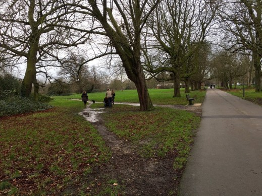 Chestnut Avenue, the Tooting Common path lined with 140 year-old horse chestnuts
