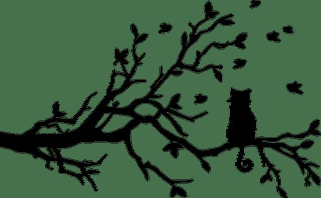arbre a chat