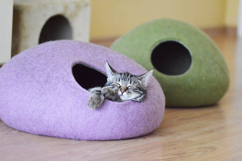 grotte chat intérieur