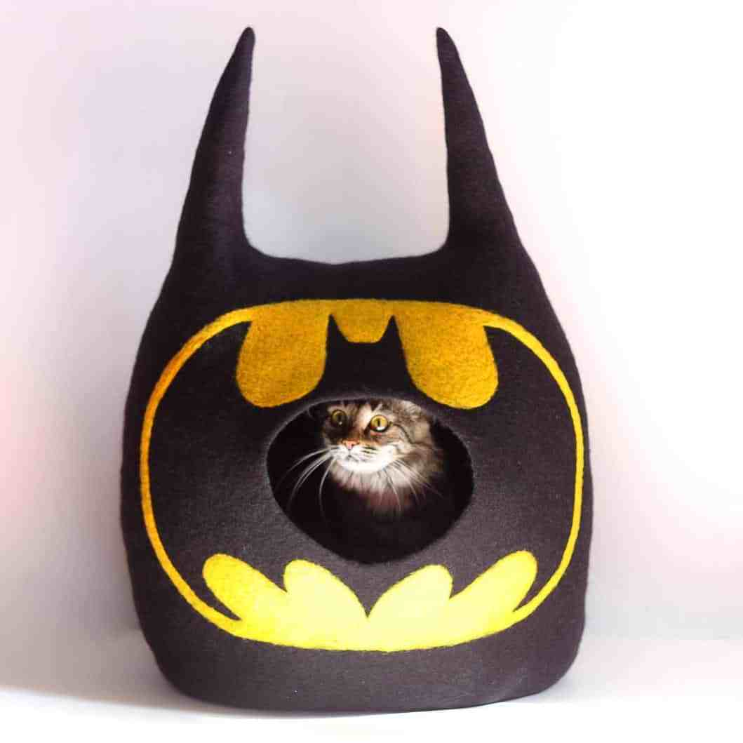 grotte chat batman