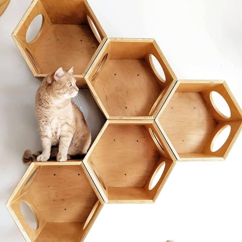 arbre a chat mural design hexagone bloc bois