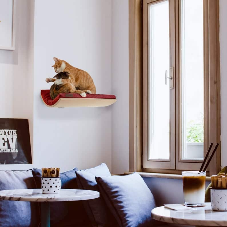 arbre a chat mural design plateforme ergonomique