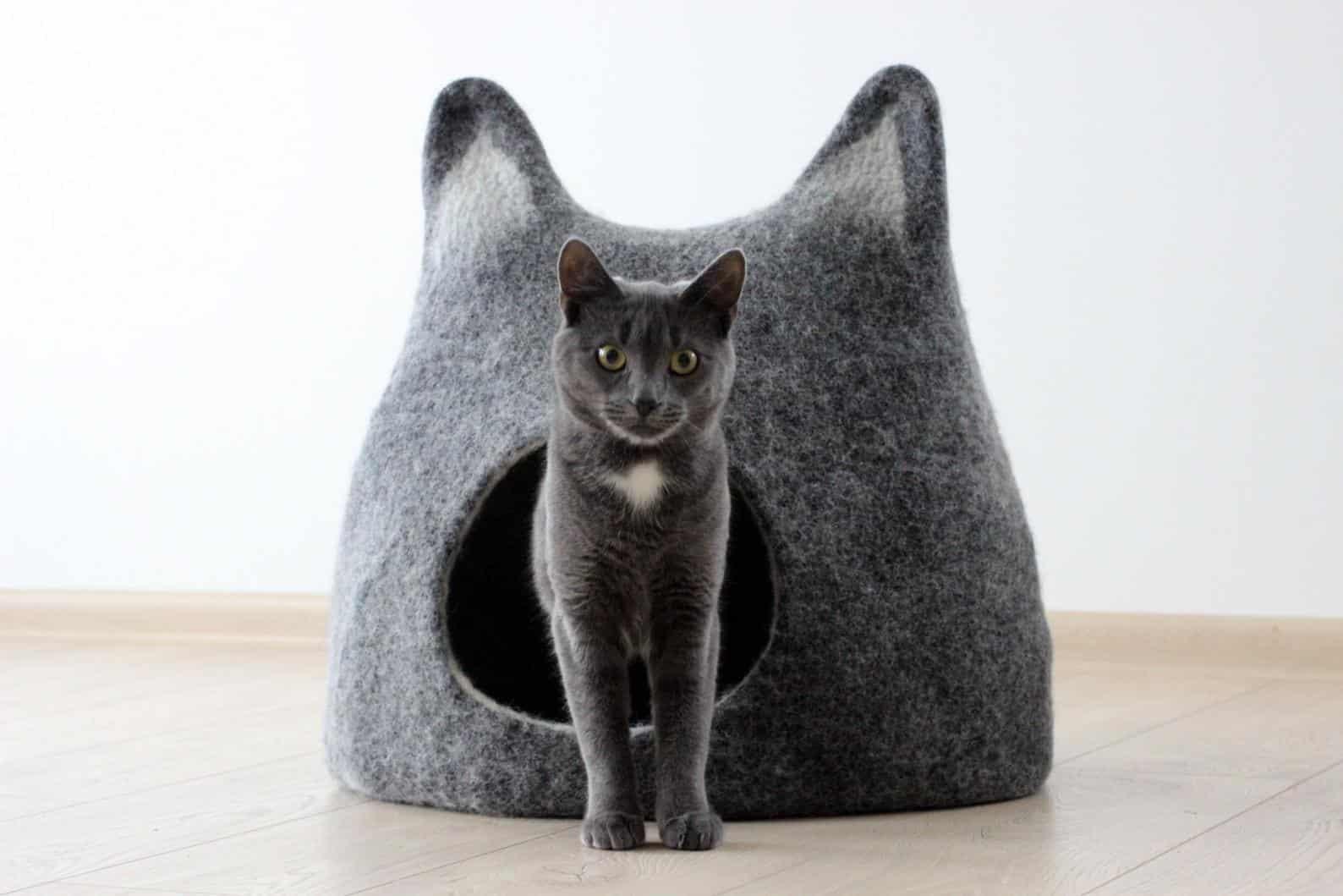 grotte aux oreilles de chat
