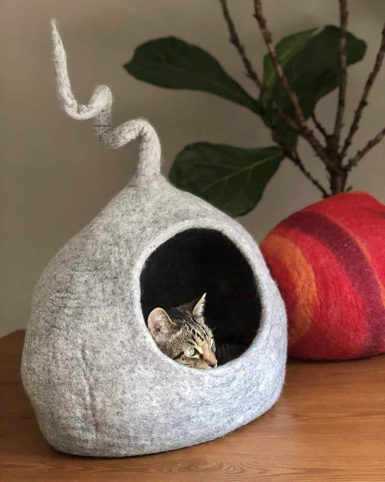 grotte chat extension pointue