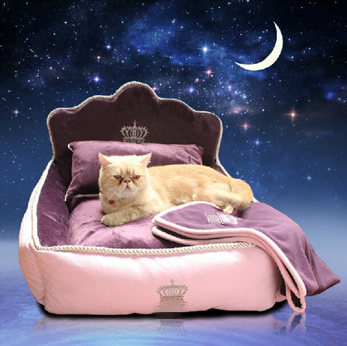 Luxury Princess Pet Bed With Pillow Blanket Dog Bed Cat Bed Mat Sofa Dog House Nest