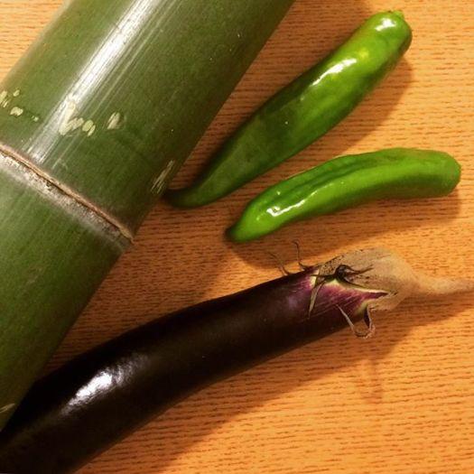 野菜の収穫&バーベキューに行きました