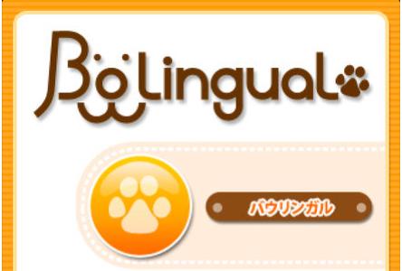犬の気持ちがわかるアプリ(機械)はバウリンガル!精度はどうなの?使ってみた結果!