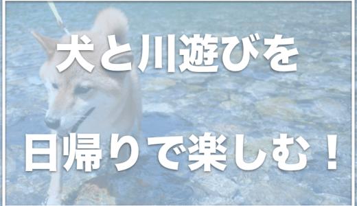 犬と川遊びを関東で楽しめる場所6選!日帰りで犬と川遊びするならココ!