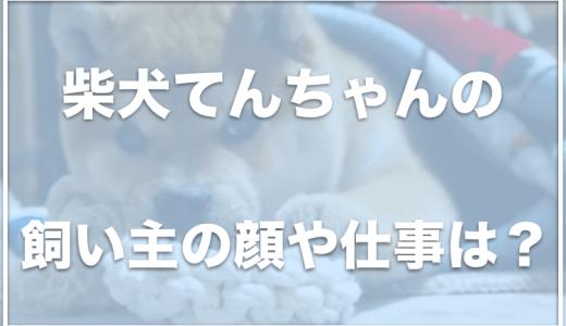 京柴てん(柴犬てんちゃん)は京都在住!飼い主の顔や仕事は何?病気で手術したって本当?