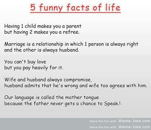 Top Most Funny Jokes
