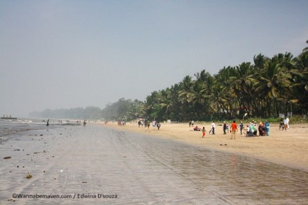 beaches in maharashtra