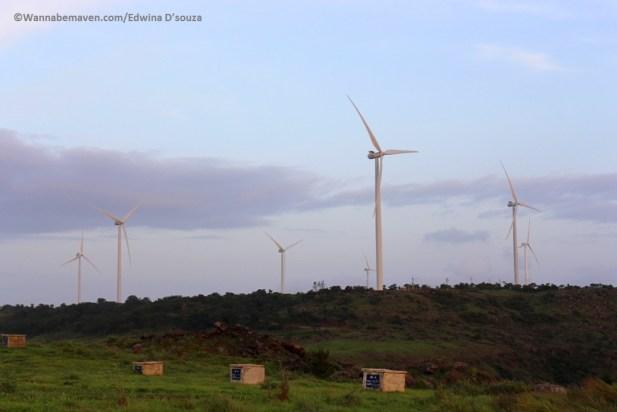 windmill-farm-phaltan-satara-things to see in phaltan-Phaltan travel guide
