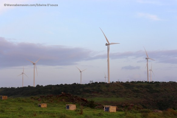 windmill-farm-phaltan-satara-things to see in phaltan-Phaltan travel guide