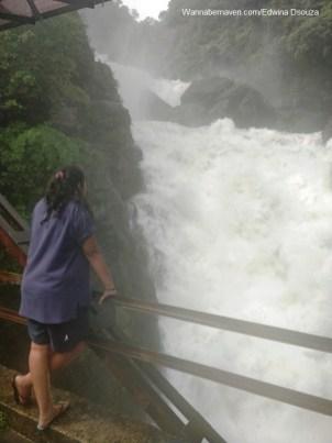 Dudhsagar - Waterfall