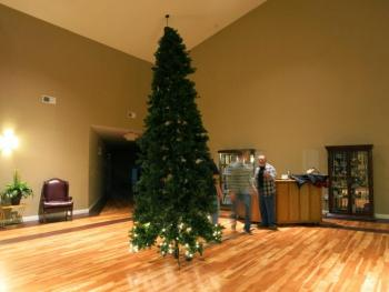 Pince Christmas Tree - 10FT (ONLINE ONLY)-0