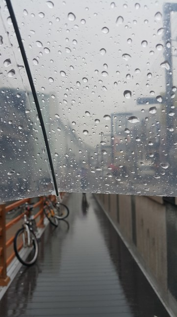 Park cycles in wet