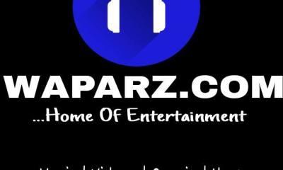 waparz logo