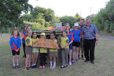 Young volunteers from the Brownies and Guides with one of the bug hotels