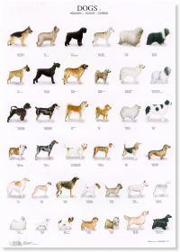 Dogs Poster #1
