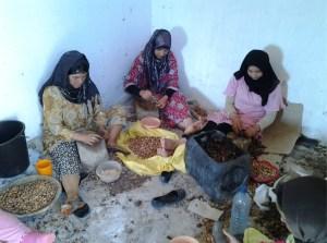 Berber kraken noten