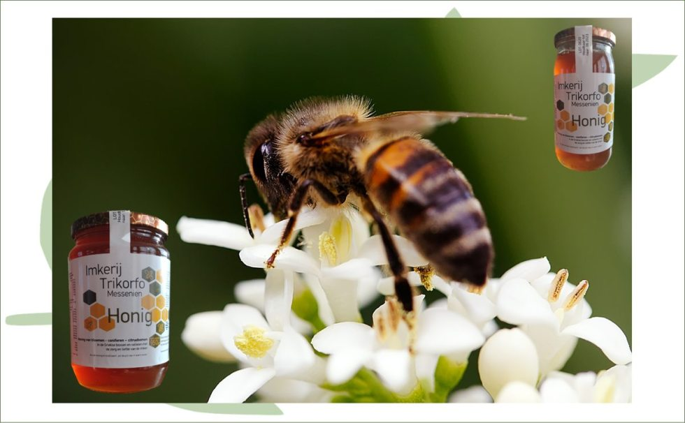Honing uit Griekenland