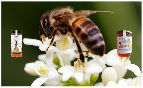 Griekse honing