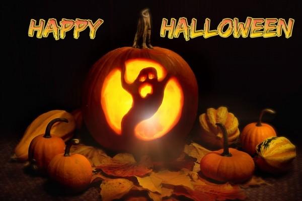 pumpkin-1014971_960_720