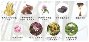 モエモエリバイブセラムに配合されているナノ化植物エキス