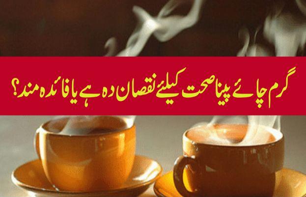 چائے فائدہ دے یا نقصان بس تھوڑی سی معلومات پڑ لیں جو ضروری ہے