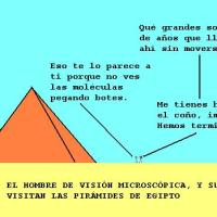 NUEVAS AVENTURAS DE MAMERTO, EL HOMBRE DE VISIÓN MICROSCÓPICA