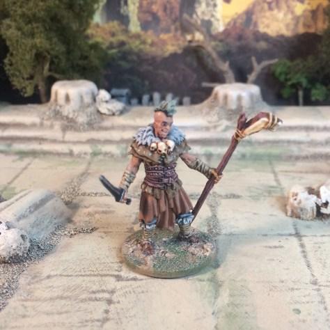 Zombicide Black Plague Painted Miniatures Character Models