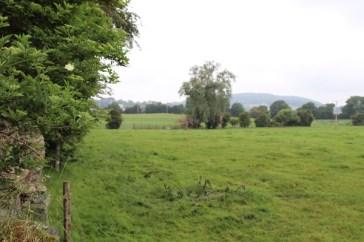 Location of James Kavanagh's farm ca 1850-early 1900's, © E R Lopresti 2016