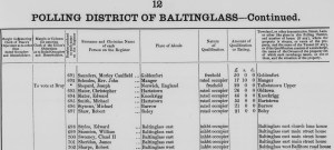Ireland Electoral Register Edward Styles Baltinglass East Church Lane 1885 to 1886 cropped