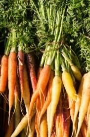 Heritage Carrots