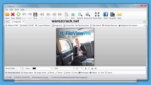 Fileviewpro 1.5.0.0 license key