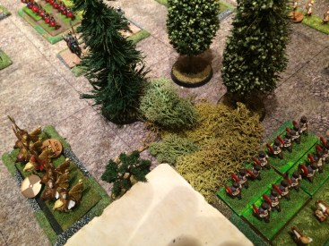 The other Auxilia are trapped in the safety of the woods and refuse to budge.