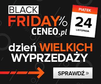 Black Friday, czyli dzień szalonych wyprzedaży