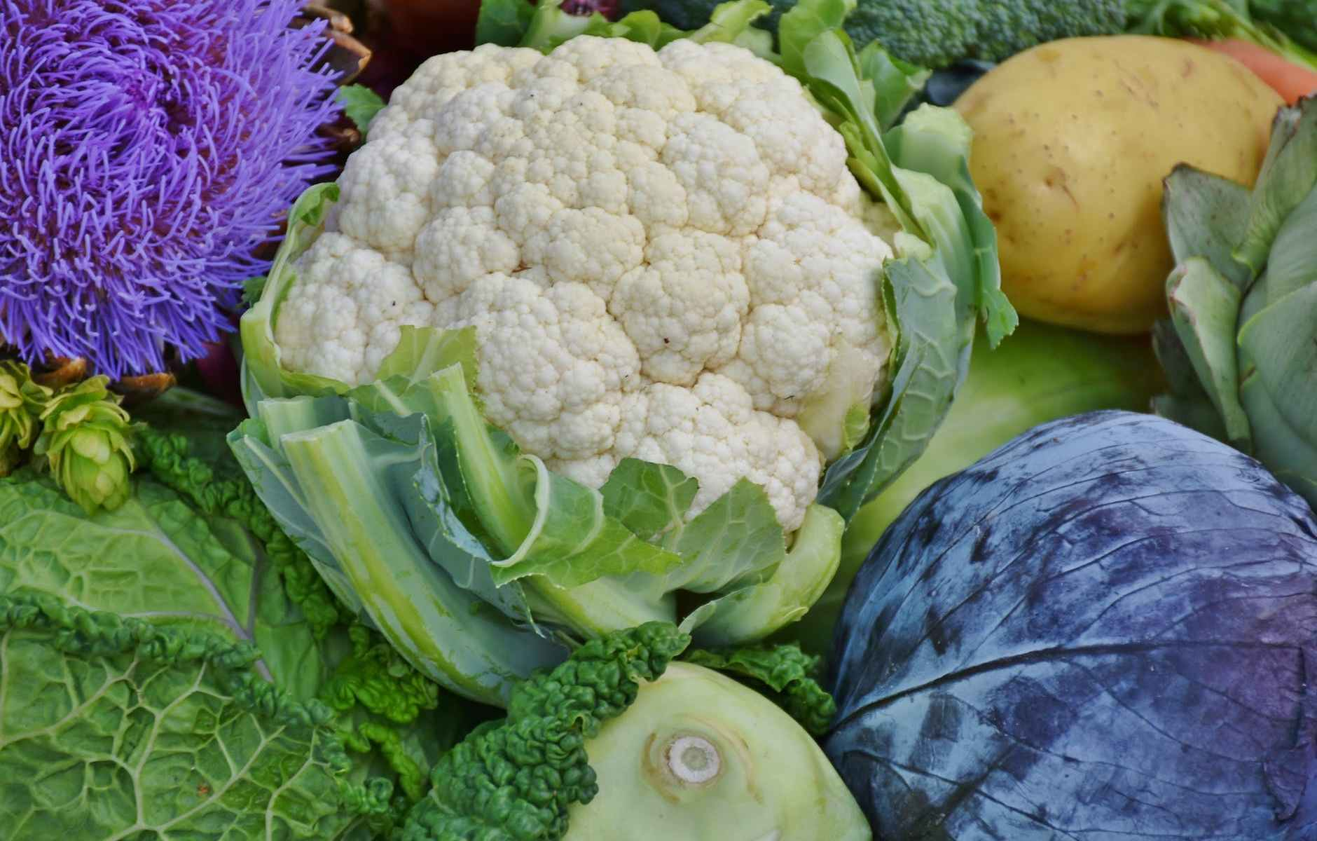Cauliflower is beneficial to our health