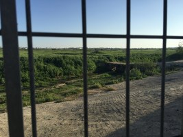 gaza-behind-iron-bars