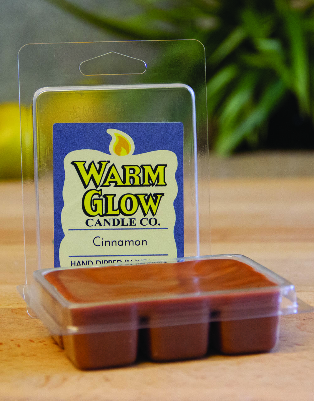 Cinnamon Scented Melt
